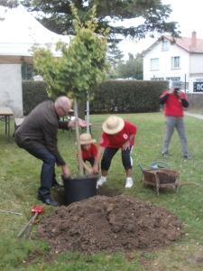 Planter un arbre pour se souvenir. Bonne idée !