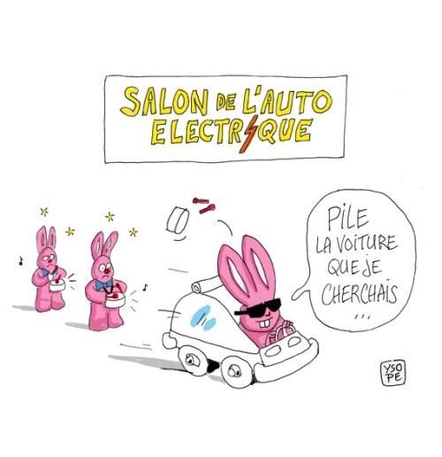 Voiture-electrique-lapin3