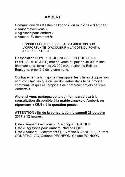 Microsoft Word -  Communiqué consultation la Cote du Pont.jpg